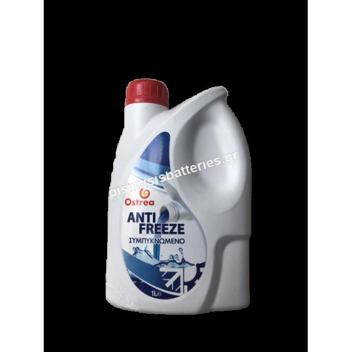 Αντιψυκτικό Shell Ostrea Antifreeze 1L